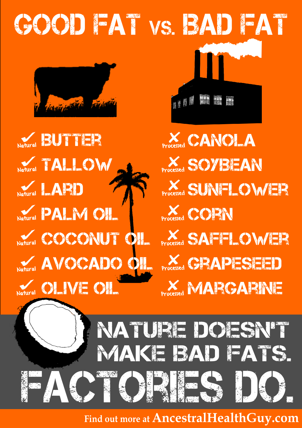 Healthy fats for cyclists