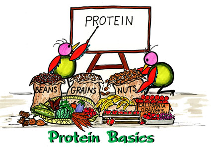 Protein for cyclists